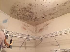 Leak On Ceiling Below Bathroom by Water Leaking From Ceiling Bathroom And How To Fix