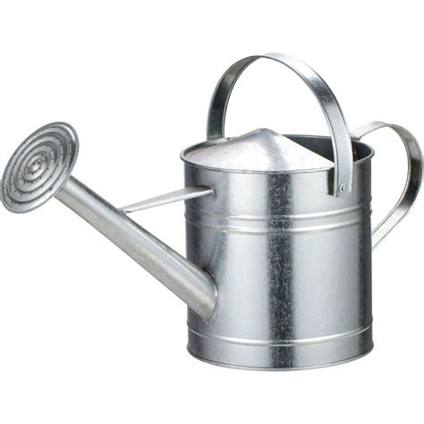 Decorative Watering Cans by Arcadia Garden Products 2 Gal Chrome Watering Can Wc09