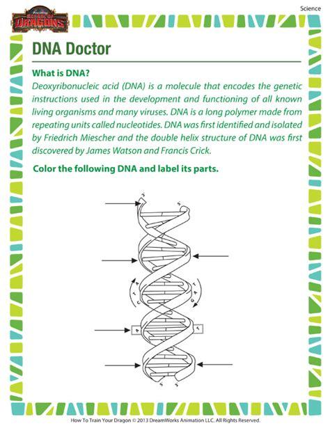 Dna Worksheets by Dna Doctor Free Dna Worksheet For 7th Grade
