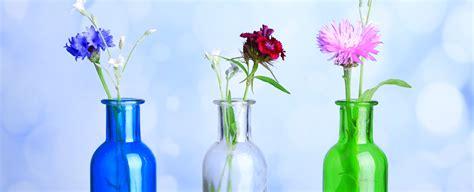 Langstielige Blumen by Bildquelle 169 Africa Studio