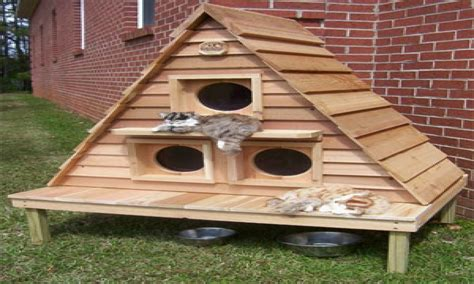 outside houses cat house plans indoor