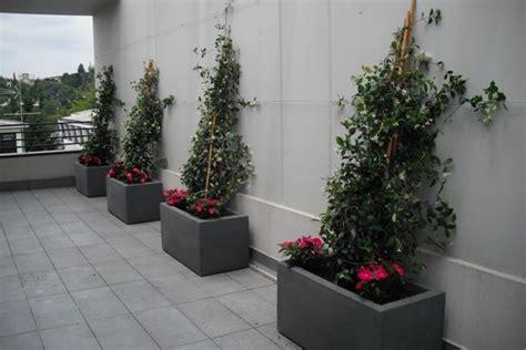 allestimento terrazzi crea il verde bergamo allestimento chiese terrazzi e
