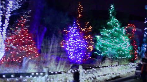 Detroit Zoo Wild Lights 2016 Youtube Lights Detroit Zoo