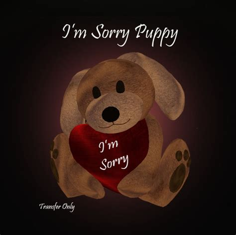 im sorry puppy second marketplace i m sorry puppy