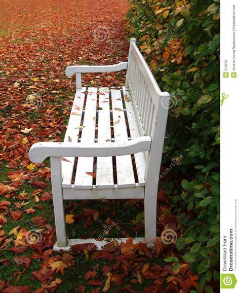 white park bench white bench in park stock photo image 310270