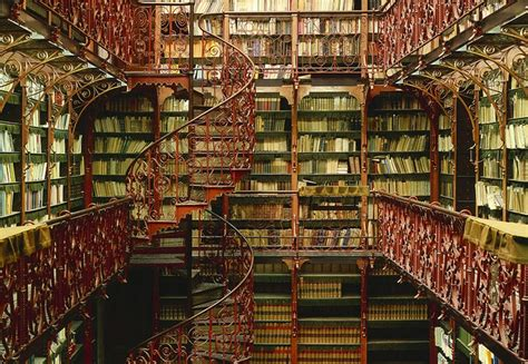 Amazing Bookshelves rafael neff s photo series is based off of some the most