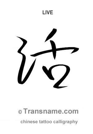 tattoo fonts english to chinese 17 best images about calligraphy tattoos on