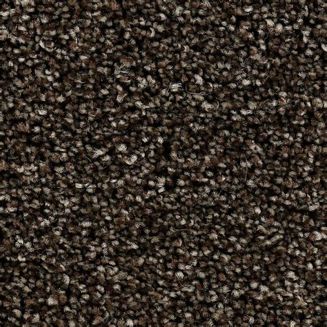 home decorators collection greenlee i color mochachino 12 ft carpet 6857 tx17 1200 ab the