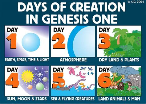 what is the story of day creation day 5 and 6 walking with yeshua jesus