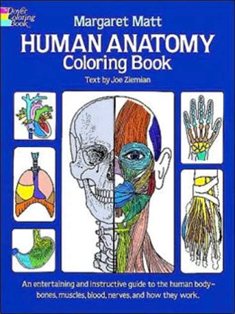 anatomy coloring book books a million human anatomy coloring book by margaret matt