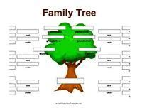 1000 images about family tree on pinterest family trees