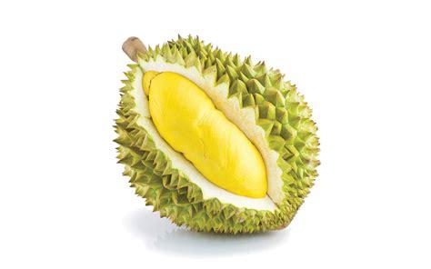 kumpulan gambar durian buah favorit   penggemar
