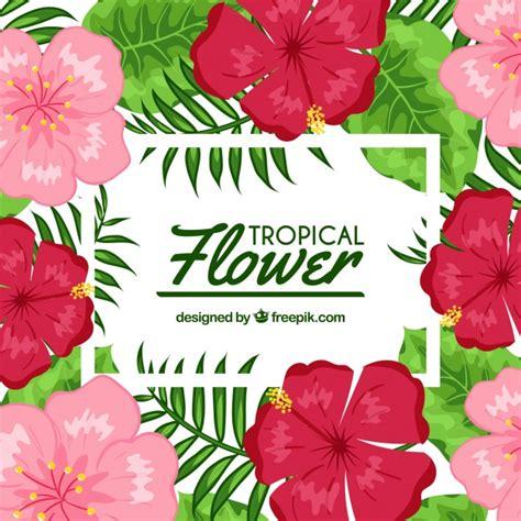 imagenes de flores exoticas para descargar fondo flores tropicales en dise 241 o plano descargar