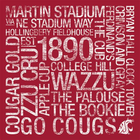 washington state colors washington state college colors subway photograph by
