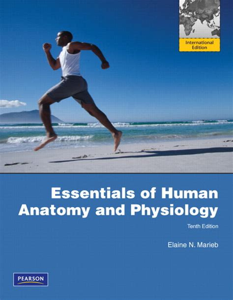 human anatomy 9th edition archives filesuser