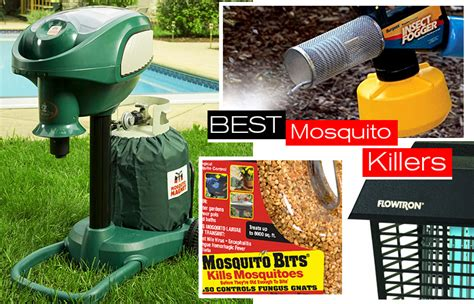 choosing the best mosquito killer mosquito guide
