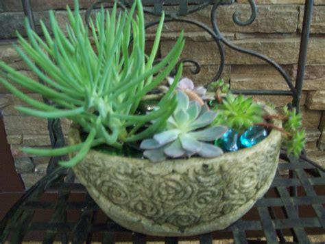 Ideas For Indoor Succulents Design Fresh Indoor Succulent Bowl 19357