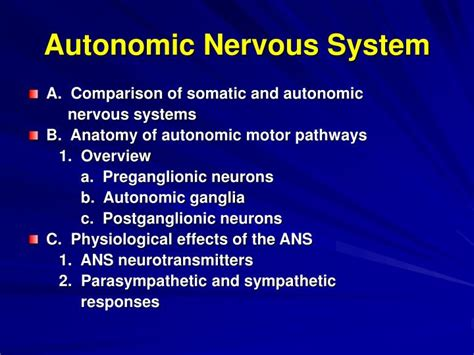 powerpoint templates nervous system powerpoint template nervous system images powerpoint
