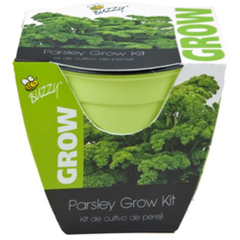 indoor herb garden kit lowes shop buzzy herb gardening kit at lowes