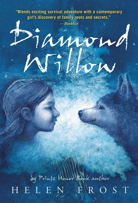 finding diamonds in dungeons books willow helen macmillan