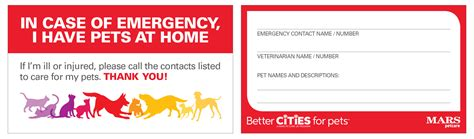 pet emergency card template in of emergency wallet card best photo wallet
