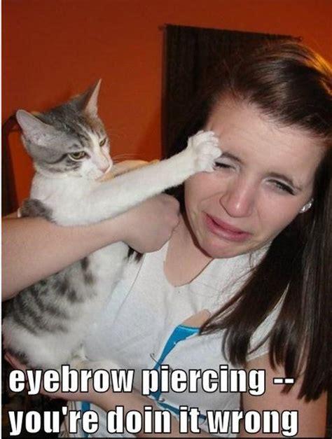Piercing Meme - piercing memes image memes at relatably com