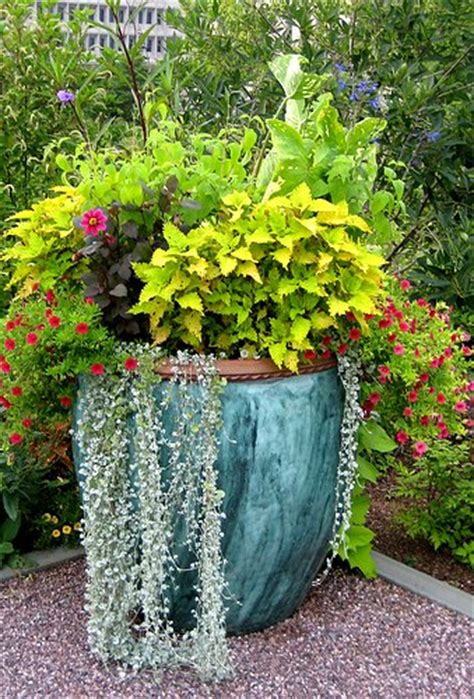 ideas for container gardens container garden