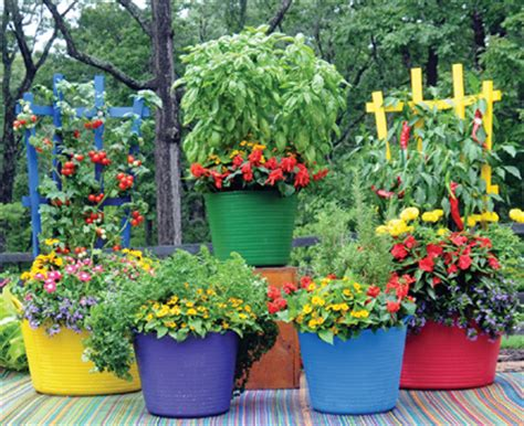 Kinsman Garden by Uses Made Of Recycled Polyethylene Medium Trug Tubs In Brilliant Colors Kinsman Garden
