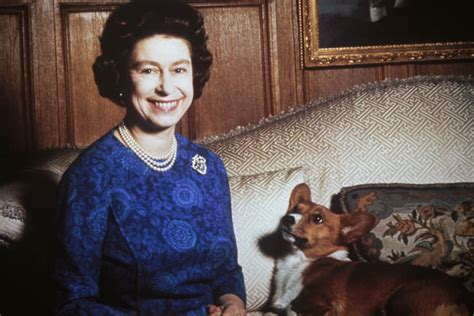 queen elizabeth ii corgis the peak of chic 174 for the love of corgis