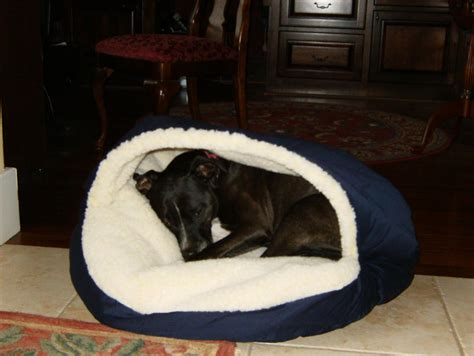 cave dog bed bedroom knockout pet bed microsuede cozy cave dog hires