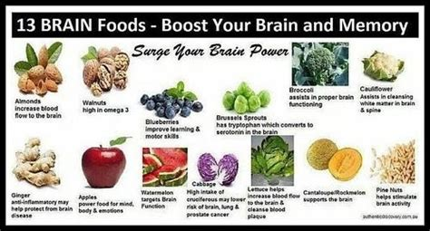 7 Brain Boosting For Your by A Great Guide On Food That Helps Boost Your Brain And