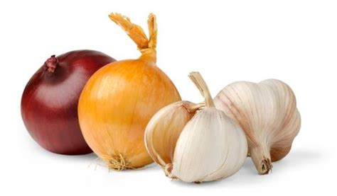 scientific findings about onions garlic could protect against hip osteoarthritis