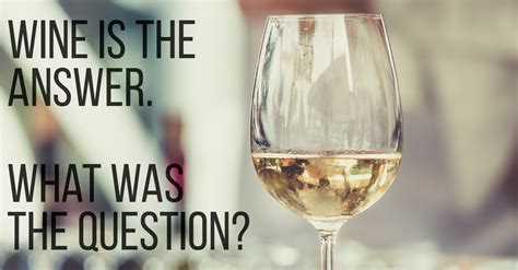 funny quotes  wine lovers  understand vinepair