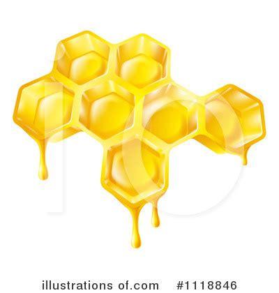 kaepa golden bee hive plans