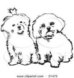 royalty free rf bichon clipart illustrations vector