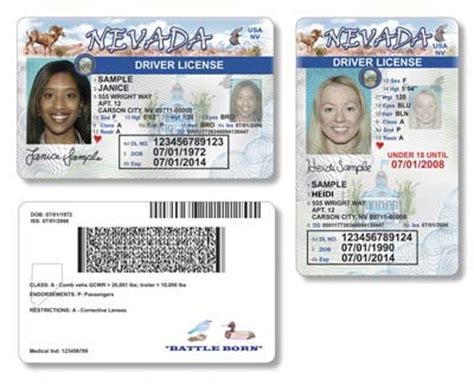 new driver's licenses to be issued in nevada – las vegas