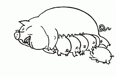 pigs coloring pages coloring home guinea pig coloring pages to print guinea pig coloring