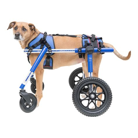 Doggie Wheelchair Petco » Home Design 2017