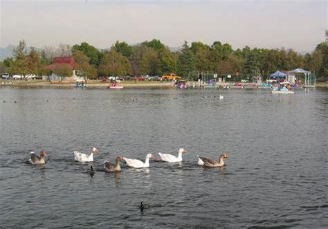 paddle boats lake balboa lake balboa park
