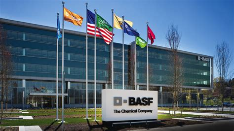 Home Plans For Sale by Basf To Exit Dimer And Polyamide Resin Business Raw