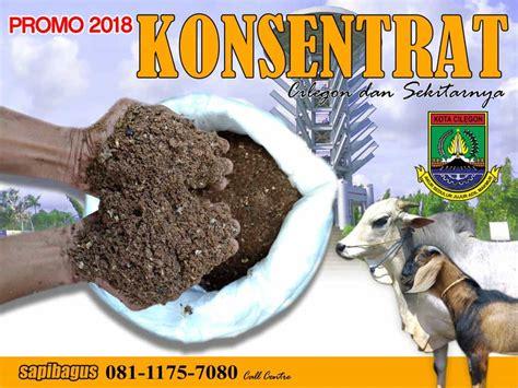Jual Afkir Bandung promo jual konsentrat pakan sapi dan kambing di serang dan
