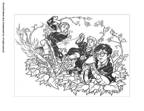 harry potter coloring pages hermione hermione with harry coloring pages hellokids com