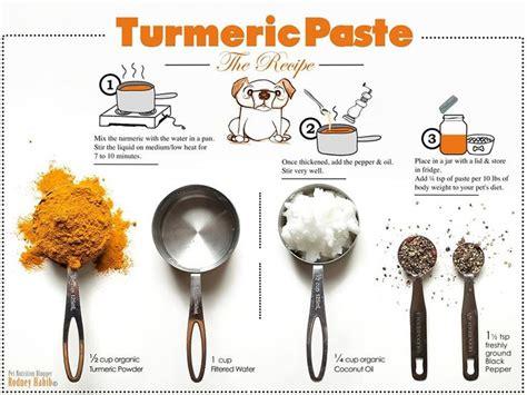 can dogs eat turmeric 25 best ideas about turmeric paste on turmeric golden milk turmeric for