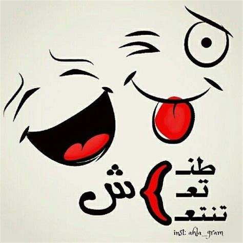 ay oallh tnsh taash tntaash funny words bear