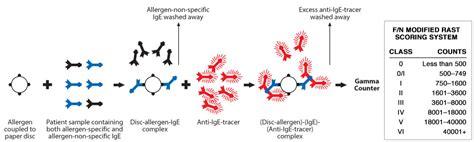 rast test allergie наличие анти сперматозоидных антител gt gt видео для взрослых