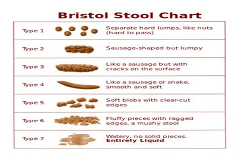 Classification Of Stool by Gallery Gastroenterology Centre