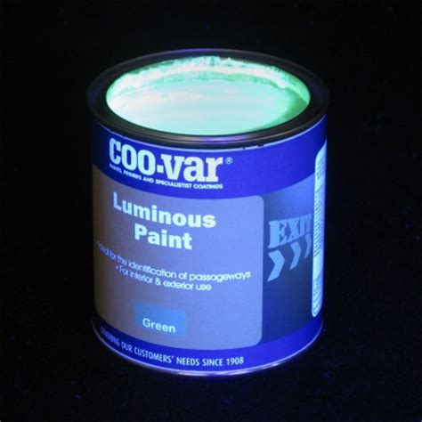 glow in the paint co za luminous glow paint
