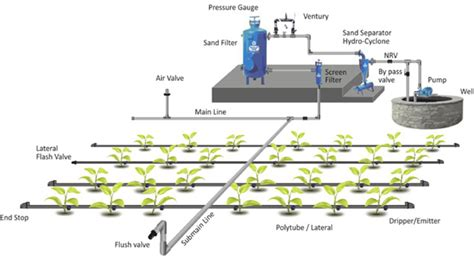 Drip Irrigation Information Guide Asia Farming How To Set Up Drip Irrigation System For Vegetable Garden