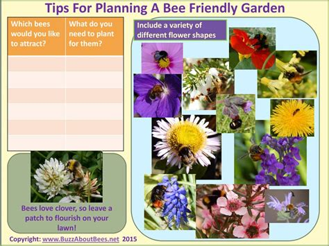 the bee friendly garden easy ways to help the bees and make your garden grow books planting a bee friendly garden