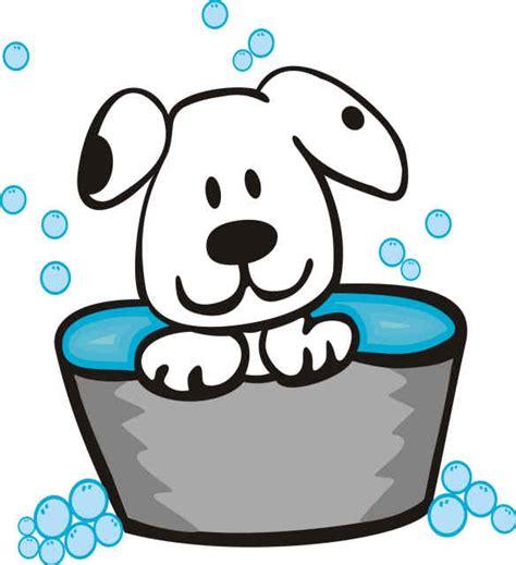 puppy washing fort walton grooming pet wash esther fl u scrub a pup